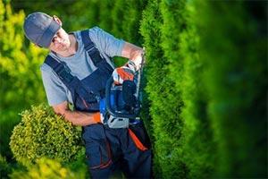 Entrepreneur en Entretien d'un jardin ou espace vert Brenod