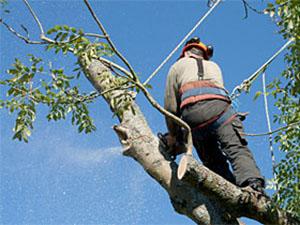 Travaux acrobatiques ou d'accès difficile
