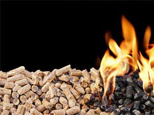 Achat bois de chauffage (granulés, bûches,...)