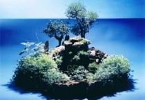 Paysagisme – Les mondes vivants et miniatures de Paul-Louis Duranton