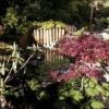Jardins minéraux : créer chez soi un véritable espace de paix