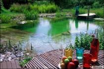 piscine naturelle une piscine colo z ro entretien. Black Bedroom Furniture Sets. Home Design Ideas