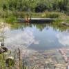 Quand la baignade devient l'objet du paysage