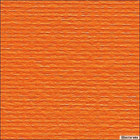 Le Textile Gagne Les Murs   Travaux.com