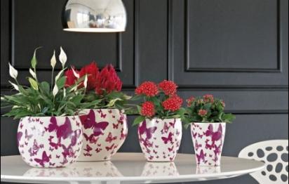 Les recettes d'une maison fleurie