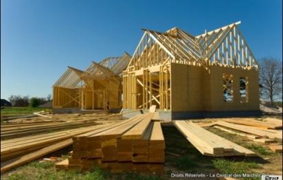 Jusqu'à 10 fois plus de bois dans la construction à partir de 2011