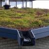 Melun : la mode des toits végétalisés