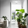 Puits de lumière: pour un éclairage gratuit et naturel
