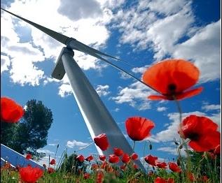Vienne : une éolienne chez soi