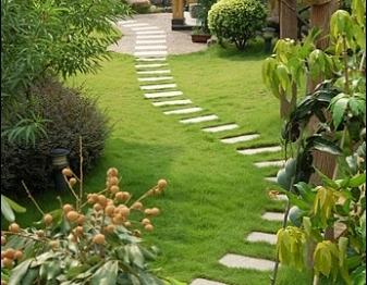 Un jardin tout en couleur