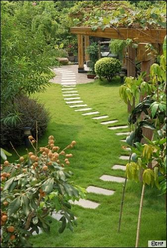 Un jardin tout en couleur - Travaux.com