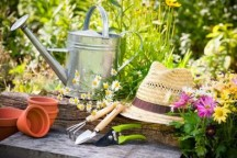 Entretien de jardin ©M.Habitat