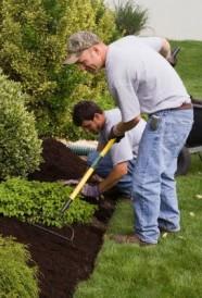 Entretien de jardin CMP