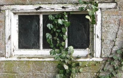 Détecter les menaces invisibles dans la maison