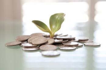 Aides à la rénovation 2019-2020 : à quoi ai-je droit en fonction de mes revenus ?