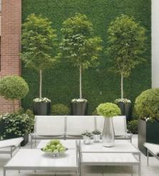 Aménager son jardin avec des petits arbustes