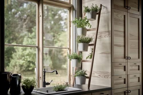 Echelle deco avec pots de-fleurs Ikea