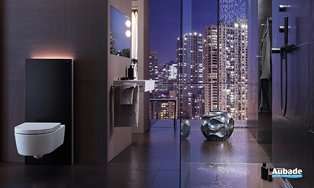 Prix de l installation ou du remplacement d un WC   Travaux.com c0946f303851