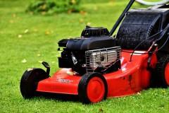 Entretien de jardin : tonte pelouse