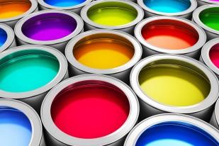 Peinture vinylique : la choisir, son application et son prix @Expert-peinture